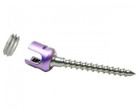 Crescent Open Pedicular Polyaxial Screw